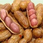 Фъстък - Arachis hypogaea L.-плод