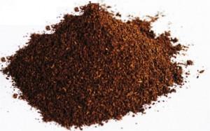 Ванилия - Vanilla-семена