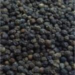 Черен пипер - Piper nigrum - плод